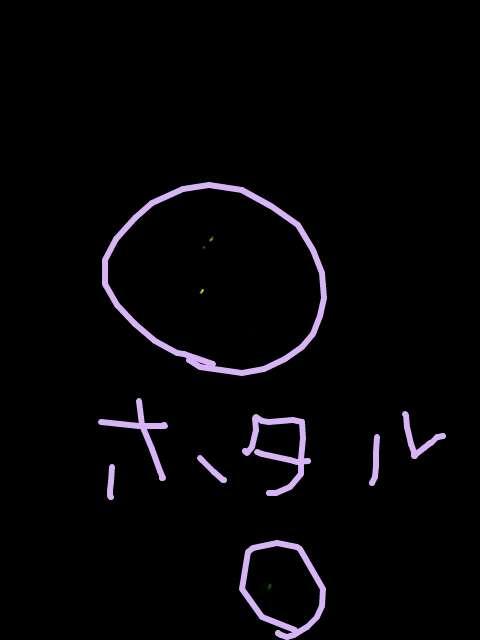 20120717-124456.jpg