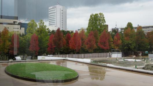 金沢の紅葉