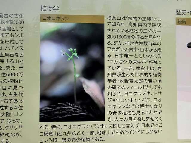 横倉山看板2-2