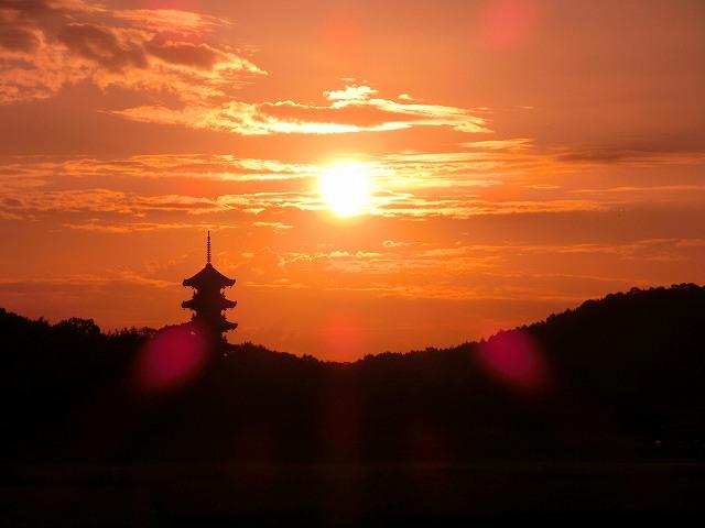 国分寺の夜明け2