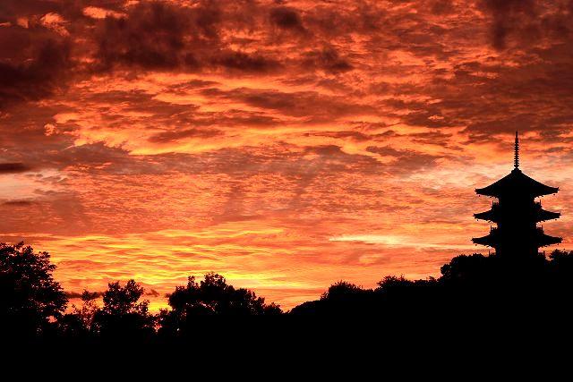 国分寺の夕焼け1