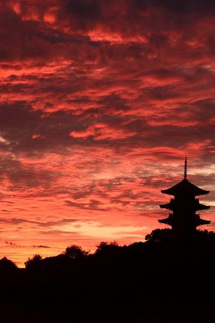 国分寺の夕焼け2