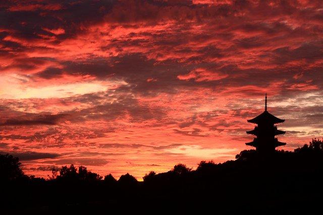 国分寺の夕焼け3