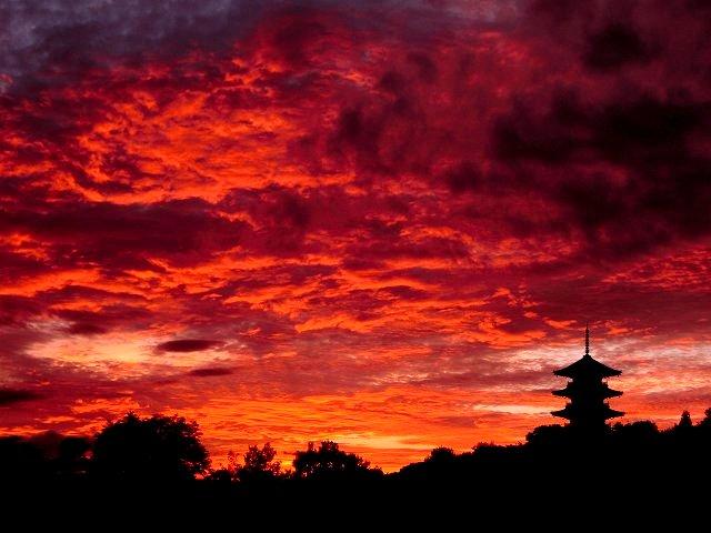 国分寺の夕焼け4
