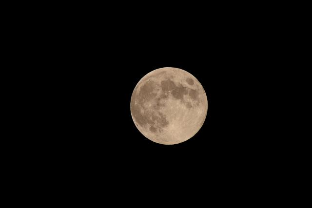 中秋の満月1