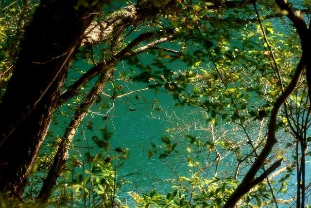 コバルトの池4