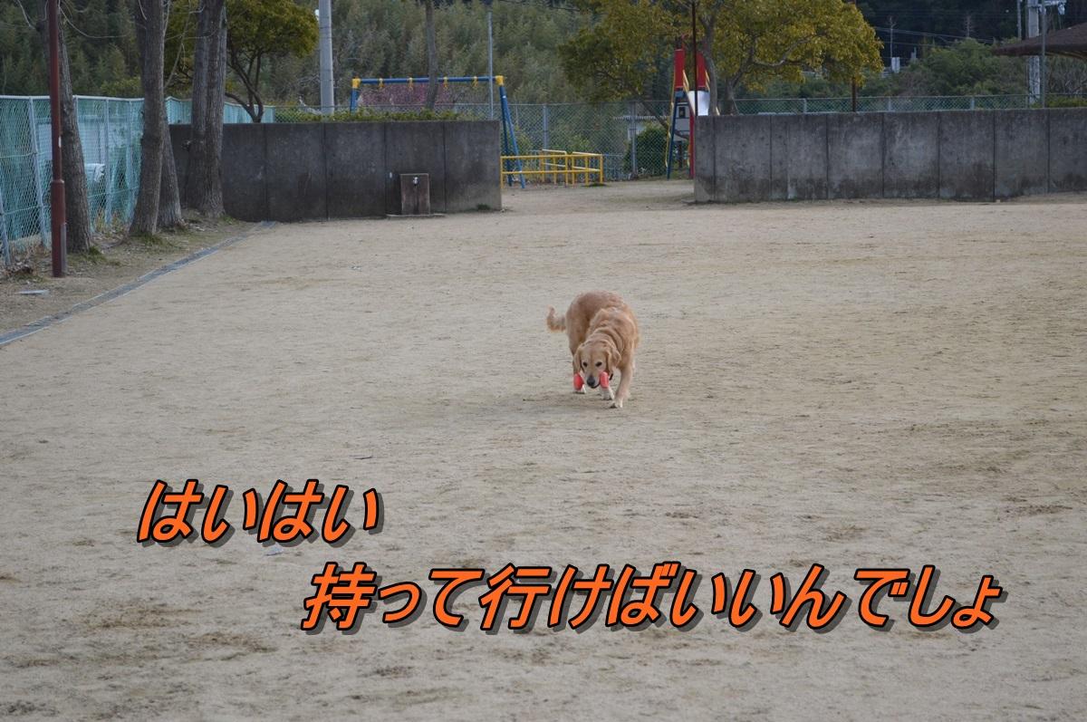 DSC_1830.jpg