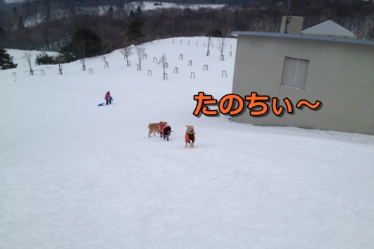 IMG_4887-006.jpg