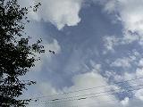 002_20120917110016.jpg