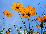 010_20120808074019.jpg