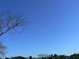010_20121102032451.jpg
