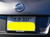 011_20130107015504.jpg
