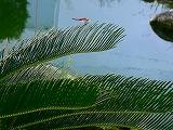 063_20120830235538.jpg