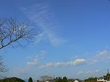 114_20121103092449.jpg