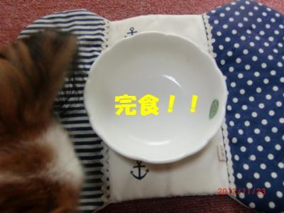 017_convert_20121123174242.jpg