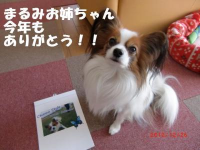 021_convert_20121226220746.jpg