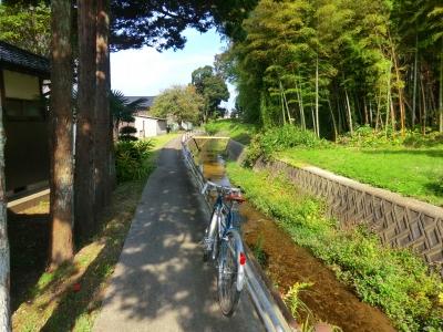 小竹川沿い2