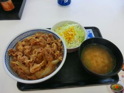 牛丼並+サラダセット
