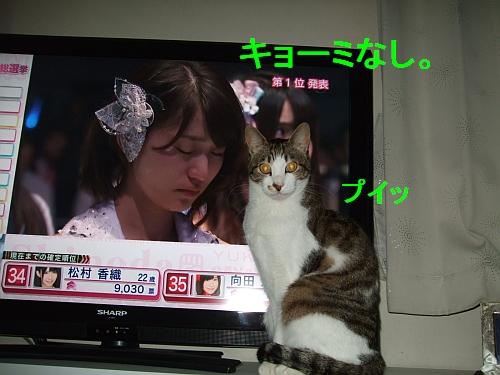 PO20120606_0026.jpg