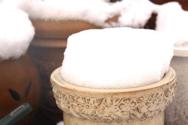 雪&植木鉢