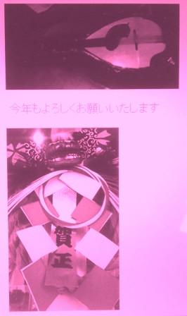 DSC_0135250101x.jpg
