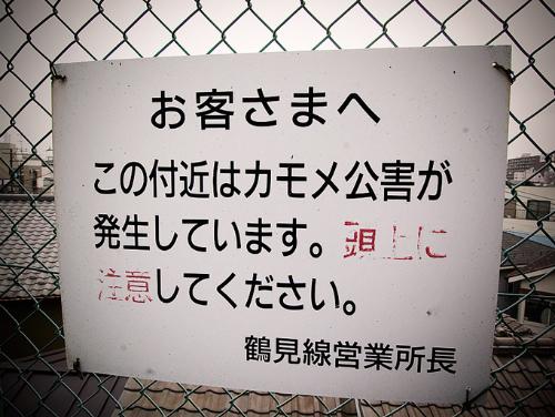 12_20120831172338.jpg