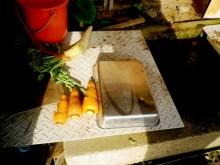 さなとりぅむ-Oさんの野菜洗い場