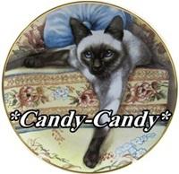 キャッテリー *Candy-Candy*