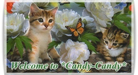 ようこそ *Candy-Candy* へ