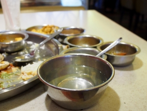 Delhi_Suruchi_1409-112.jpg