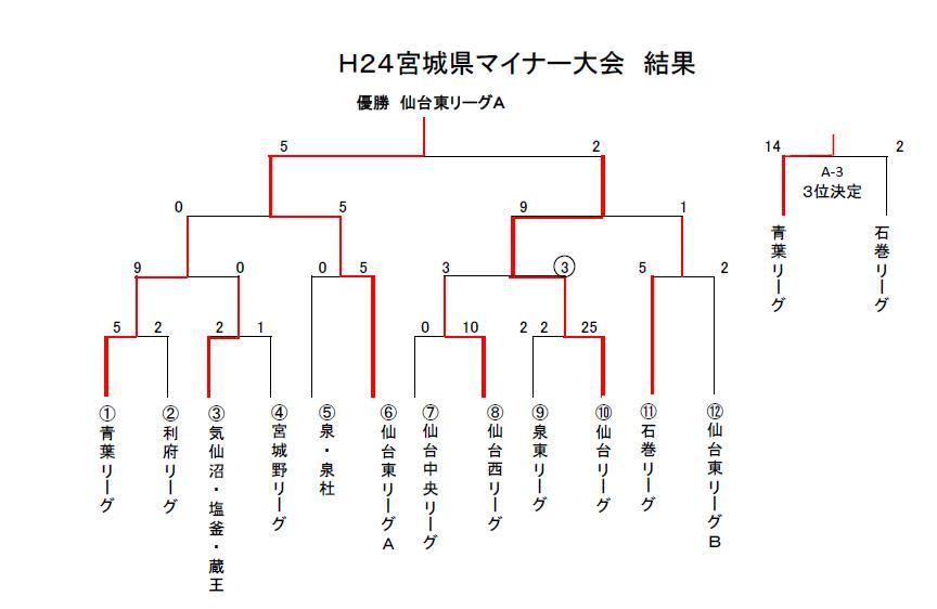 H24県マイナー大会結果