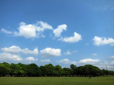 blue sky15