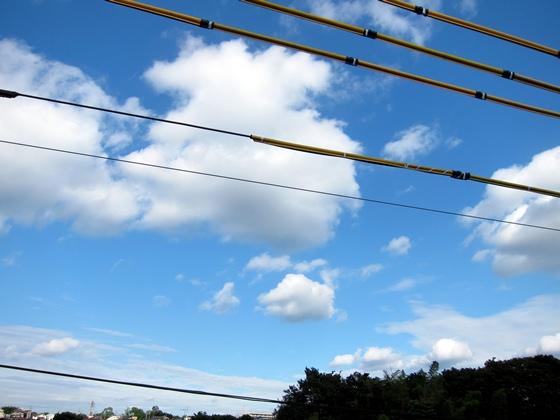 電線越しの空