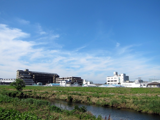 鶴見川と空