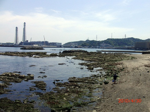 18.久里浜海岸