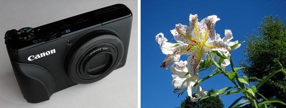 カメラと花