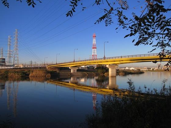 1121鶴見川の秋15