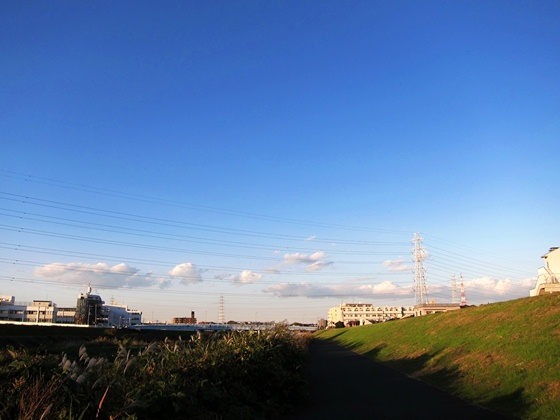 11の秋の青空09