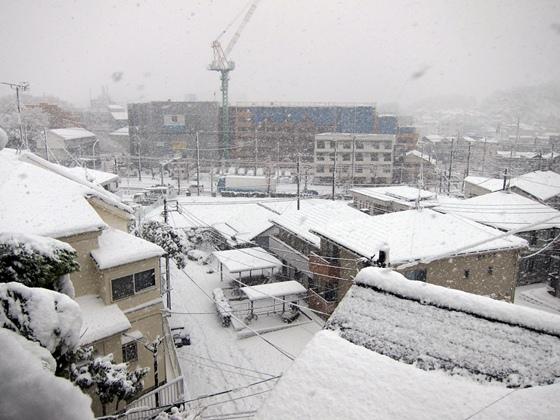 0114大雪005