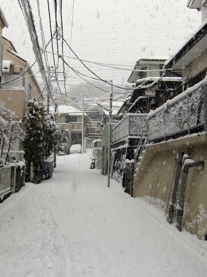 0114大雪001