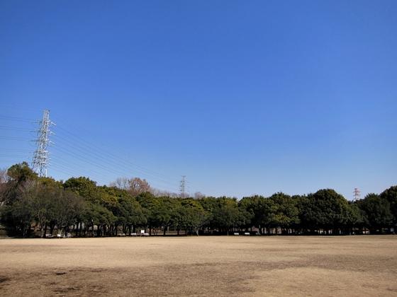 0226岸根公園梅001