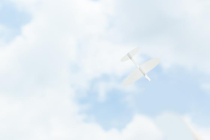 4-DSCF0062---zzt.jpg