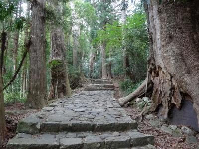 wakayama13