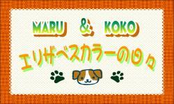 繧ィ繝ェ繧カ繝吶せ・カ・暦スー鬘悟錐_convert_20121209231133