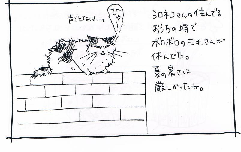 CCF20121214_00002.jpg