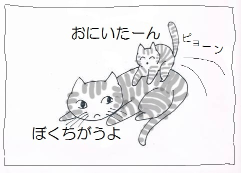 CCF20130114_00002.jpg