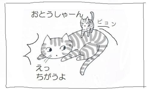 CCF20130114_00003.jpg
