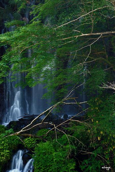 白糸の滝-50