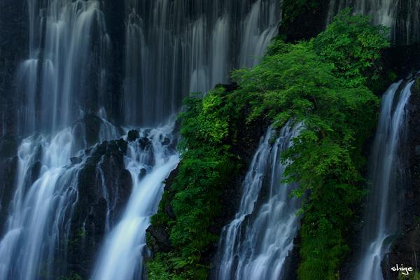 白糸の滝-43