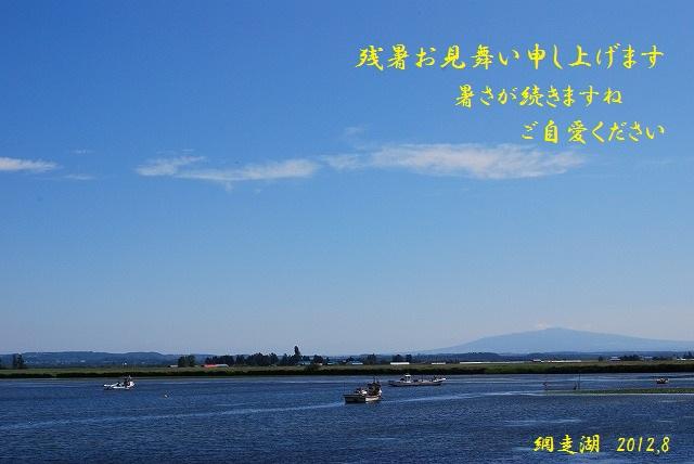 DSC_0202.jpg